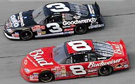 Dale Sr. and Dale Jr. side by side above car photo