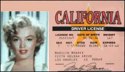 Marilyn Monroe's Driver's License